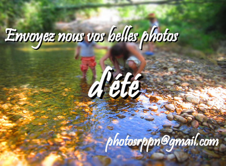 Envoyez-nous vos belles photos d'été !