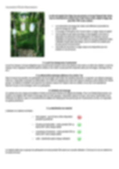 Protocole_Pandémie_#2-page-002.jpg