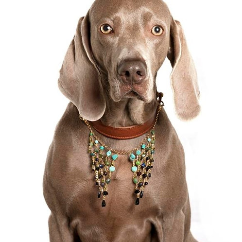Giulio - Dog necklace
