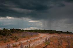 Storm (MT010)