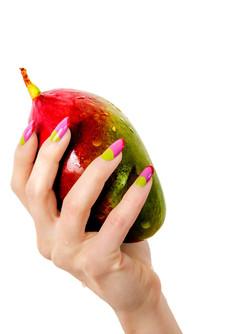 Colorful Mango (FR013)