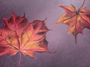 orange leaves double.jpg