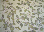 honeysuckle leaves 3.JPG