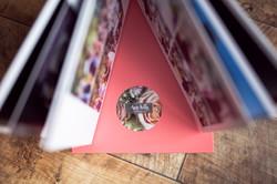 Amy Kelly Photography Album