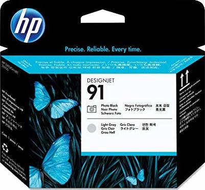 HP 91 Photo Black & Light Gray Printhead