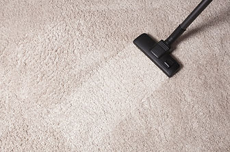 Carpet Cleaning - Spot On - Fort Myers N