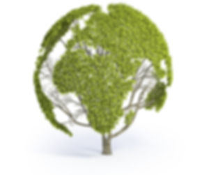 Umweltpakt Gebaeudereinigung Umweltschutz