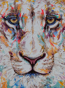Lioness (Available)