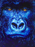 Blue gorilla (Available)