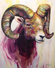 Ram (Sold)