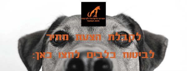 dog-insurance-price.jpg