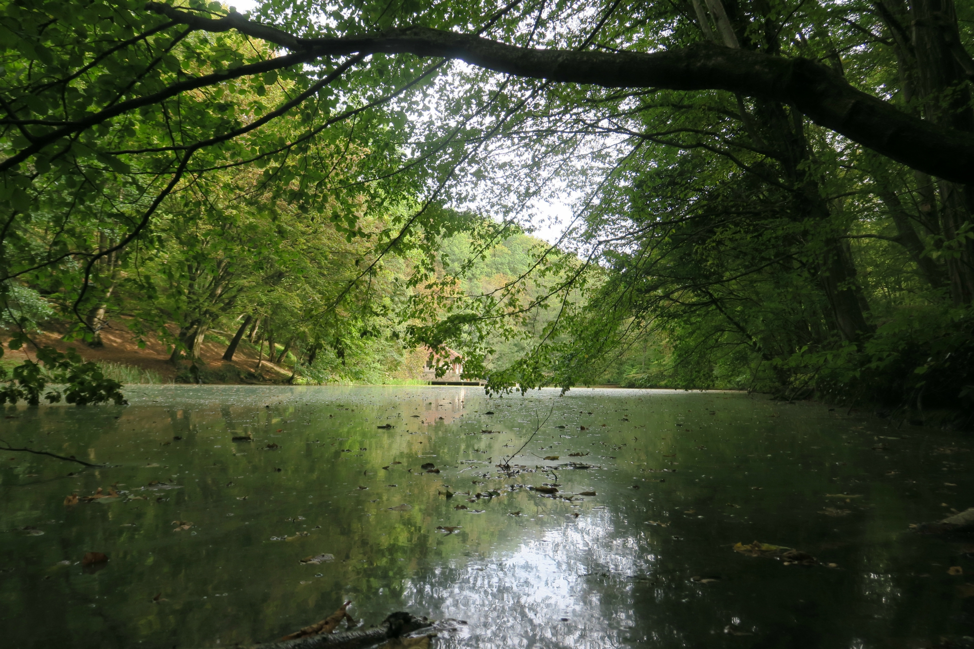 Tengerszem-tó
