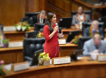 Minority Leader's Opening Day Remarks