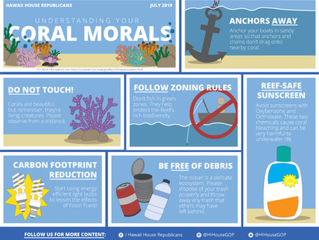 """Understanding your Coral Morals"" - July 2019 Infographic"