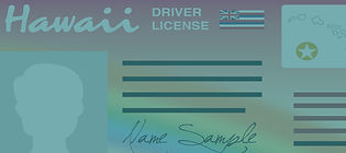 License Icon.jpg