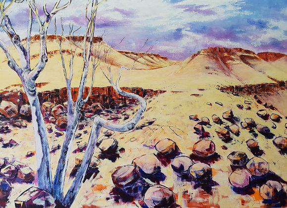 1658. Pilbara Mesa