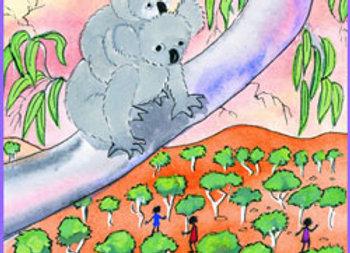894. Koala Country