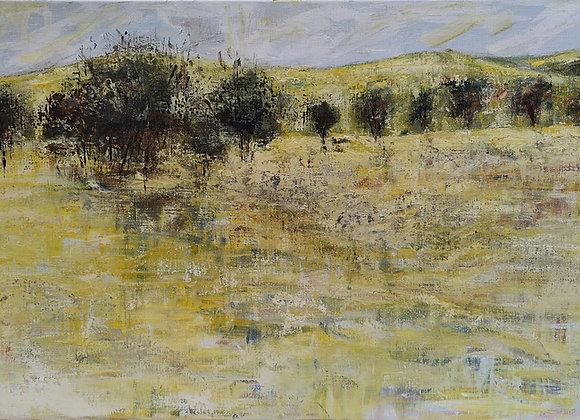 1699.North West Tasmania