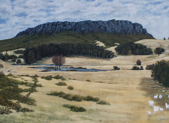1632.  Mount Roland Sheffield