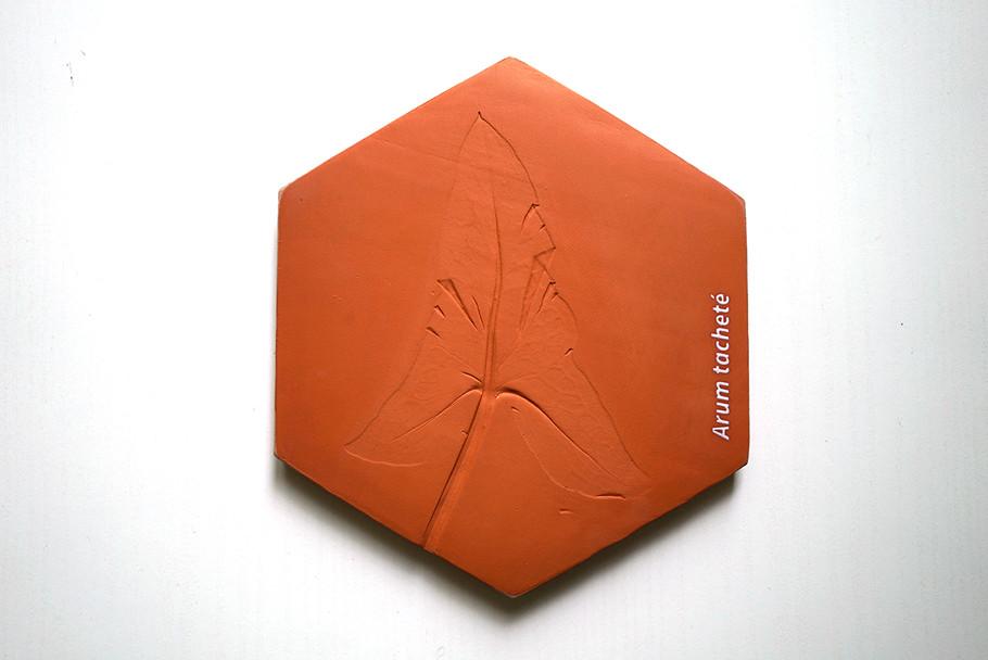 magma-EPAMarne-EPAFrance-3.jpg