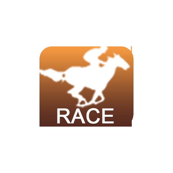 Equine Racetrack Practice