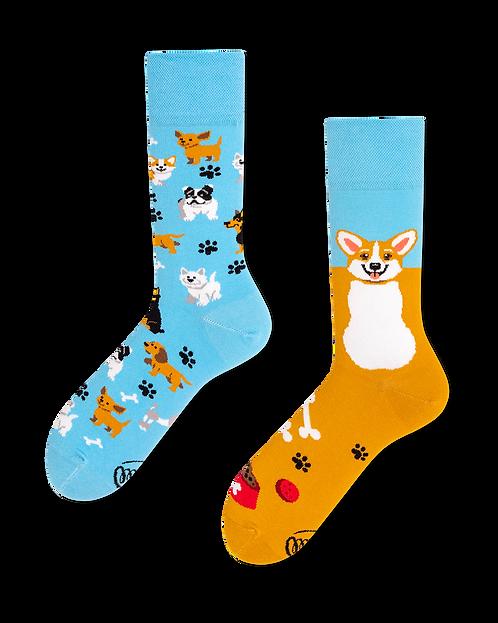 "Socken ""playful dog"""