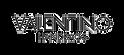 valentino-logo.png