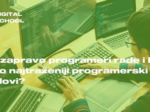 Šta zapravo programeri rade?