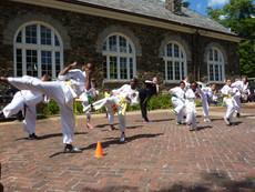 Savage Fest Martial Arts