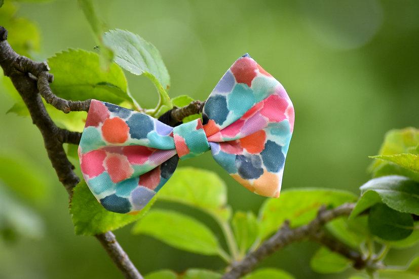Rainbow Dotty Bow Tie