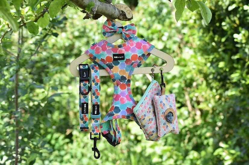 Rainbow Dotty Harness