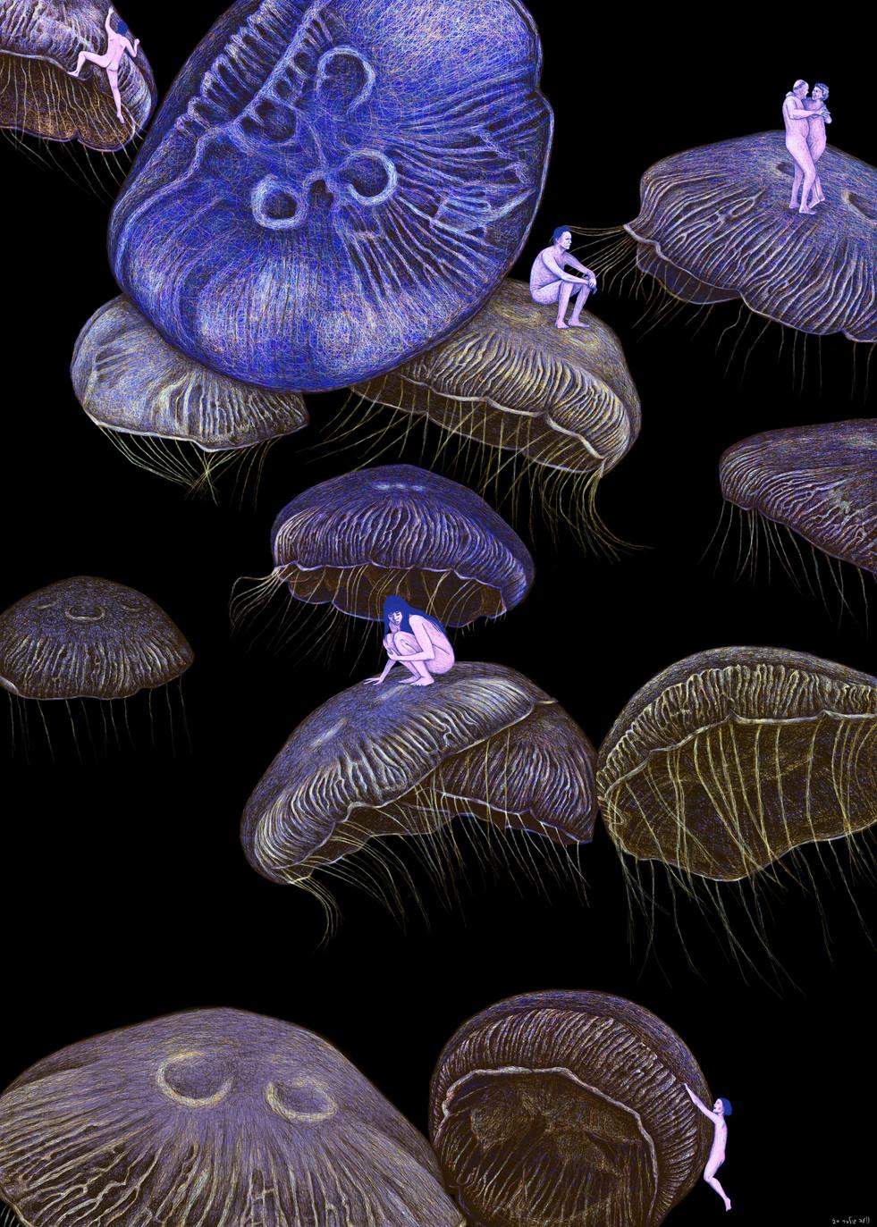 new jellyfish copy.jpg
