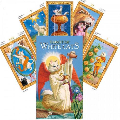 Taro Kortos Tarot Of White Cats