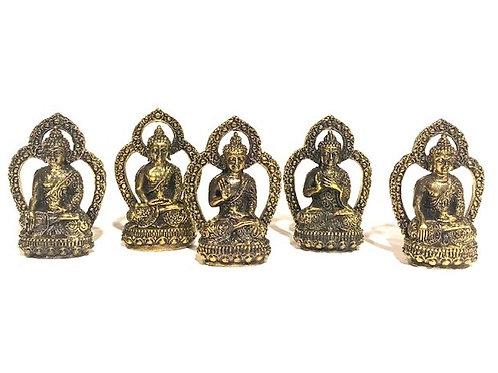 Penki Didieji Budos