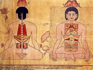 Tibeto medicinos kursas su Vsevolod Orlov