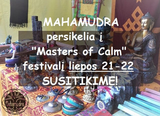 "Susitikime ""Masters of Calm"" festivalyje"