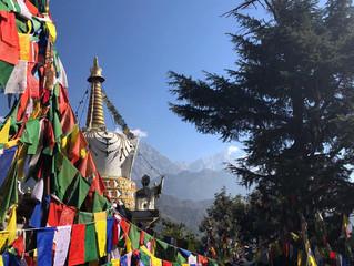 Kelionė po Šiaurės Indiją (Indijos Tibetas). Spalio 5-18 dienomis.
