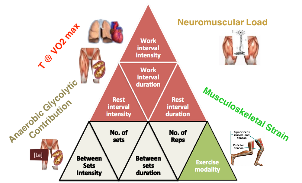 Acute Physiological Responses