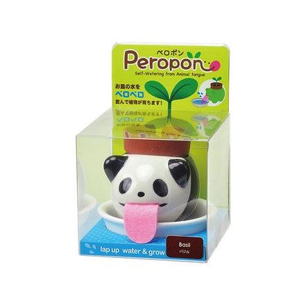 Plante à faire pousser - Peropon - Panda