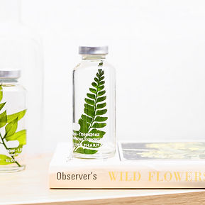 slow-pharmacy-plante-flacon-fiole-bottle