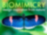 BiomimicryVeer.jpg
