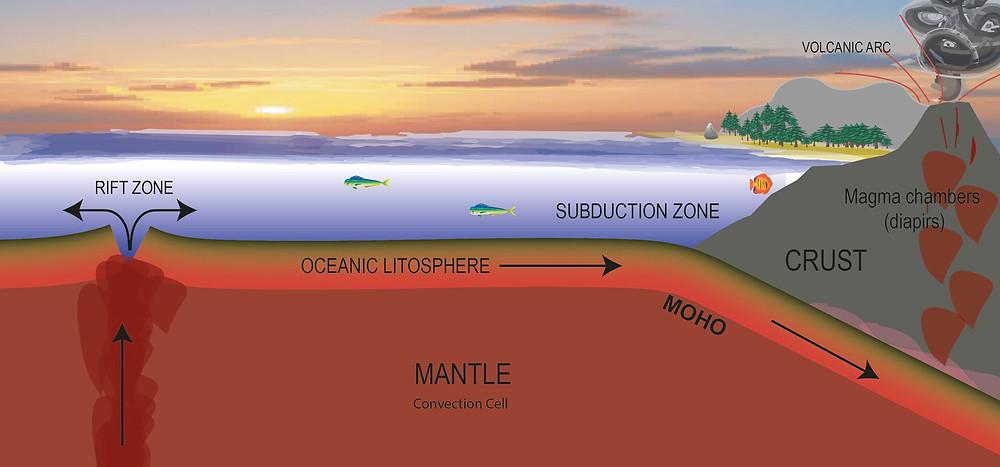 Subduction zone (arrows show plate movements)