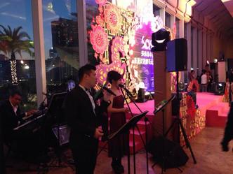Sa Sa 2014 甲午年農曆新年香港賀歲煙花匯演