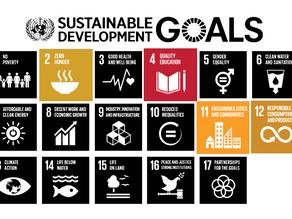 Sustainability in practice