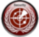 International Security Simulation