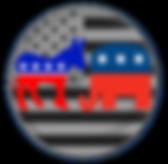 American Government Simulation