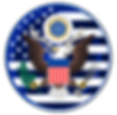 U.S. Government Simulation