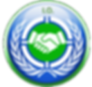 Internationa Organizations Simulation