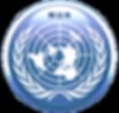 Model United Nations Simulation