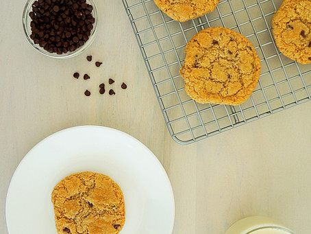 Chocolate Chip Gingerbread Cookies (gluten free, vegan, paleo)